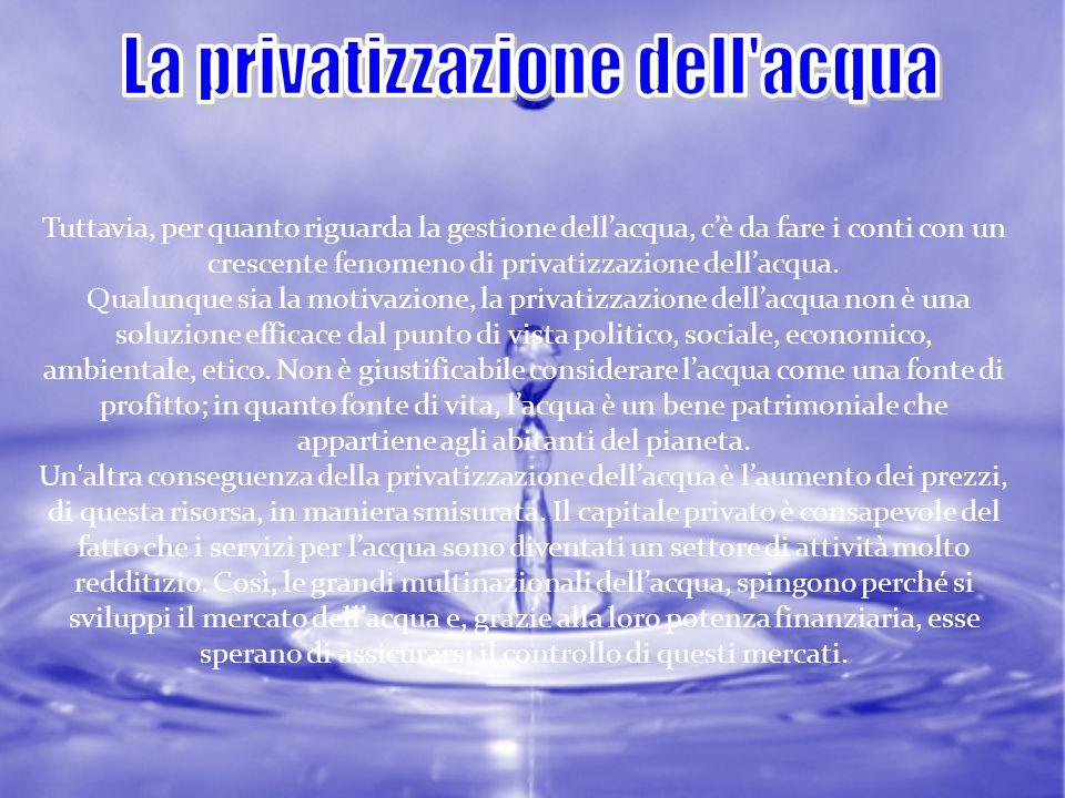 La privatizzazione dell acqua