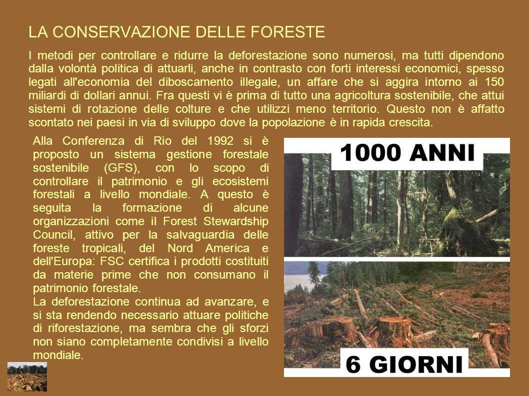 LA CONSERVAZIONE DELLE FORESTE