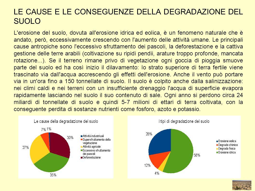 LE CAUSE E LE CONSEGUENZE DELLA DEGRADAZIONE DEL SUOLO