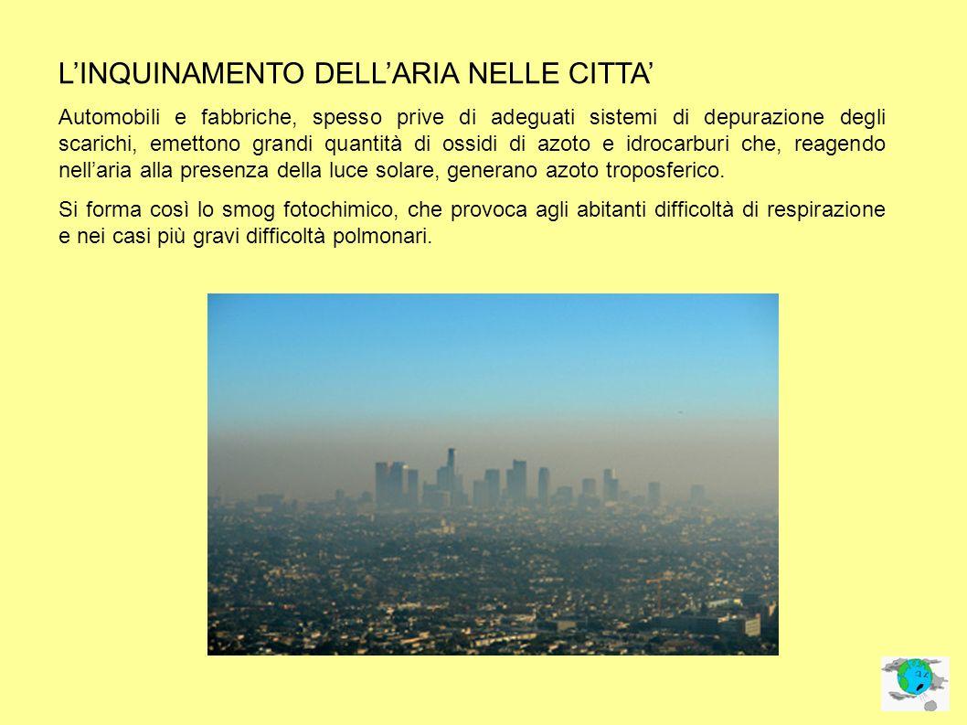 L'INQUINAMENTO DELL'ARIA NELLE CITTA'
