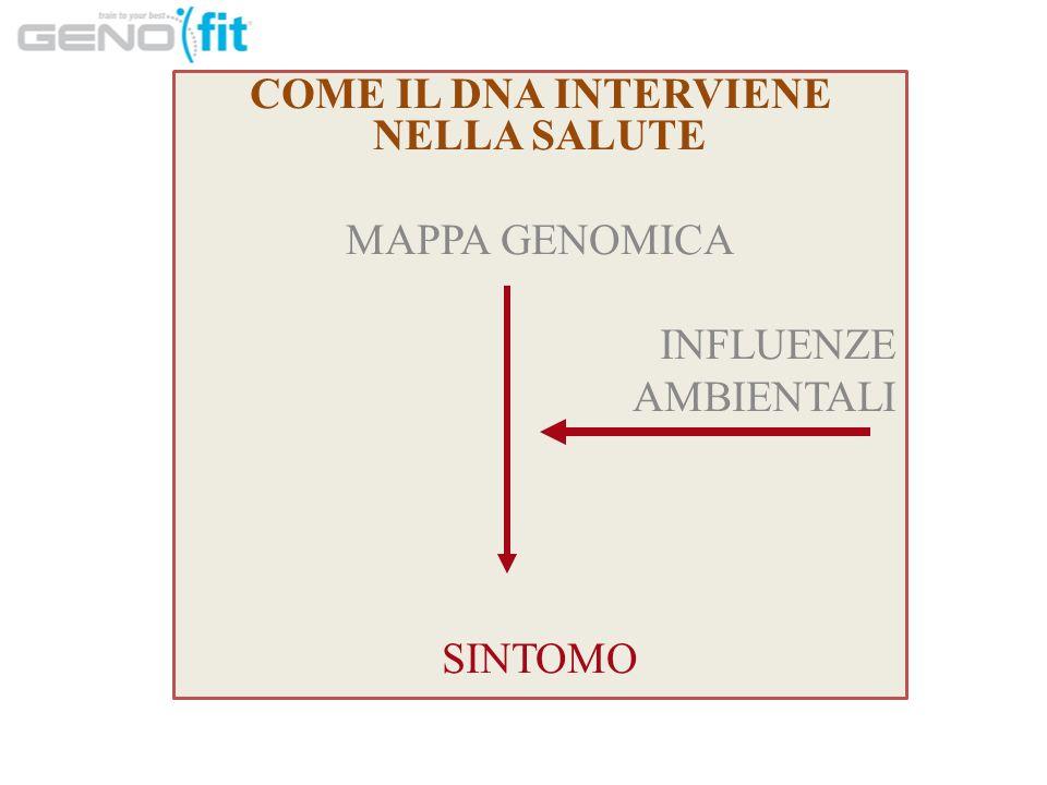 COME IL DNA INTERVIENE NELLA SALUTE