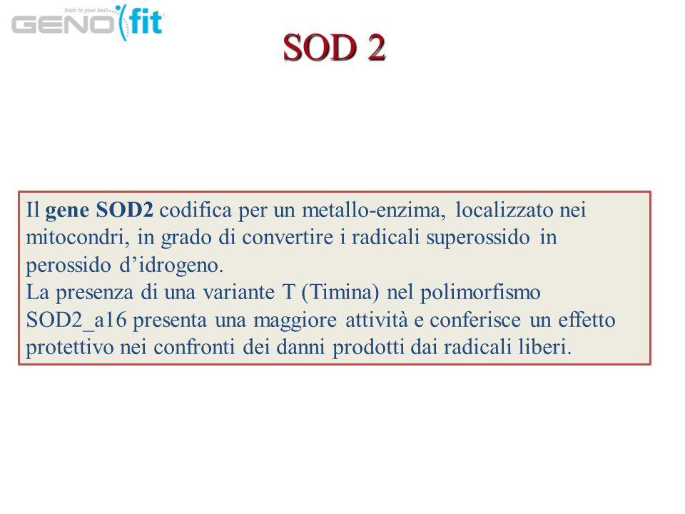 SOD 2 Il gene SOD2 codifica per un metallo-enzima, localizzato nei mitocondri, in grado di convertire i radicali superossido in perossido d'idrogeno.