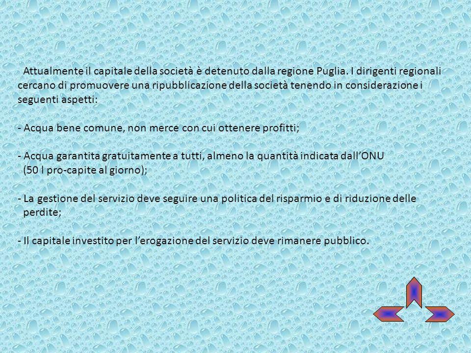Attualmente il capitale della società è detenuto dalla regione Puglia