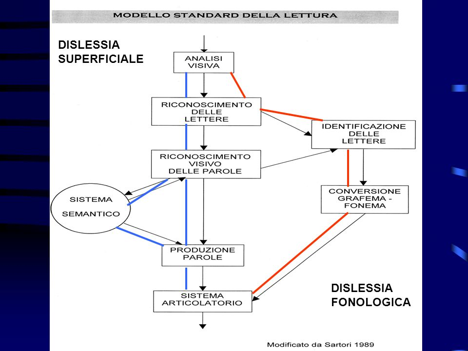 DISLESSIA SUPERFICIALE