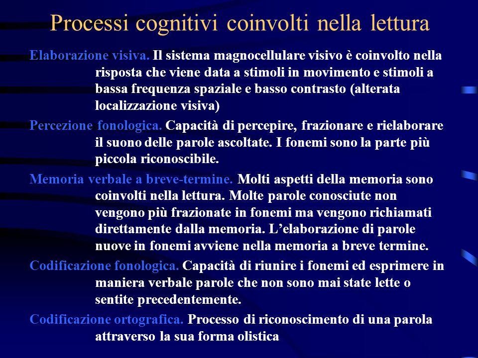 Processi cognitivi coinvolti nella lettura