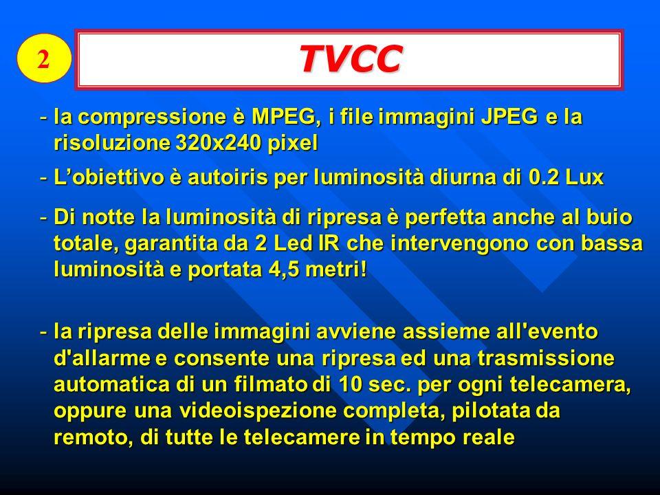 2 TVCC. la compressione è MPEG, i file immagini JPEG e la risoluzione 320x240 pixel. L'obiettivo è autoiris per luminosità diurna di 0.2 Lux.