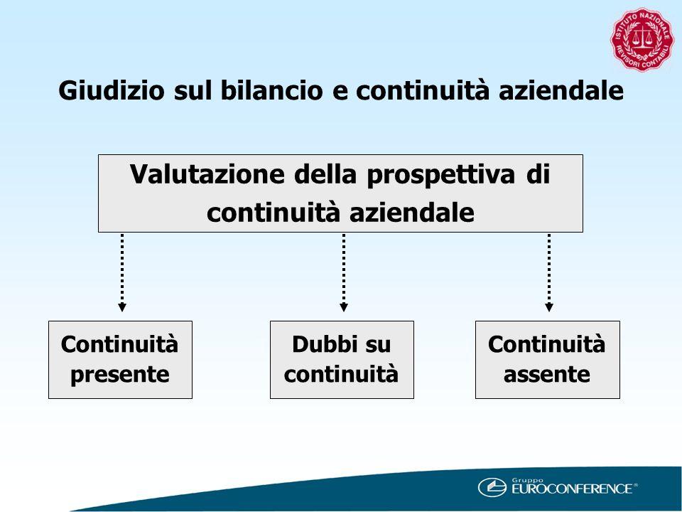 Giudizio sul bilancio e continuità aziendale