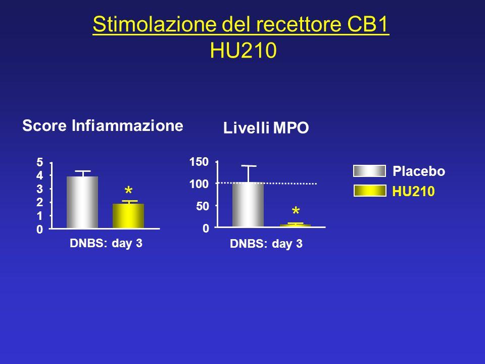 Stimolazione del recettore CB1