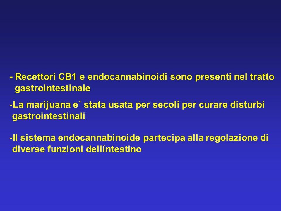 - Recettori CB1 e endocannabinoidi sono presenti nel tratto
