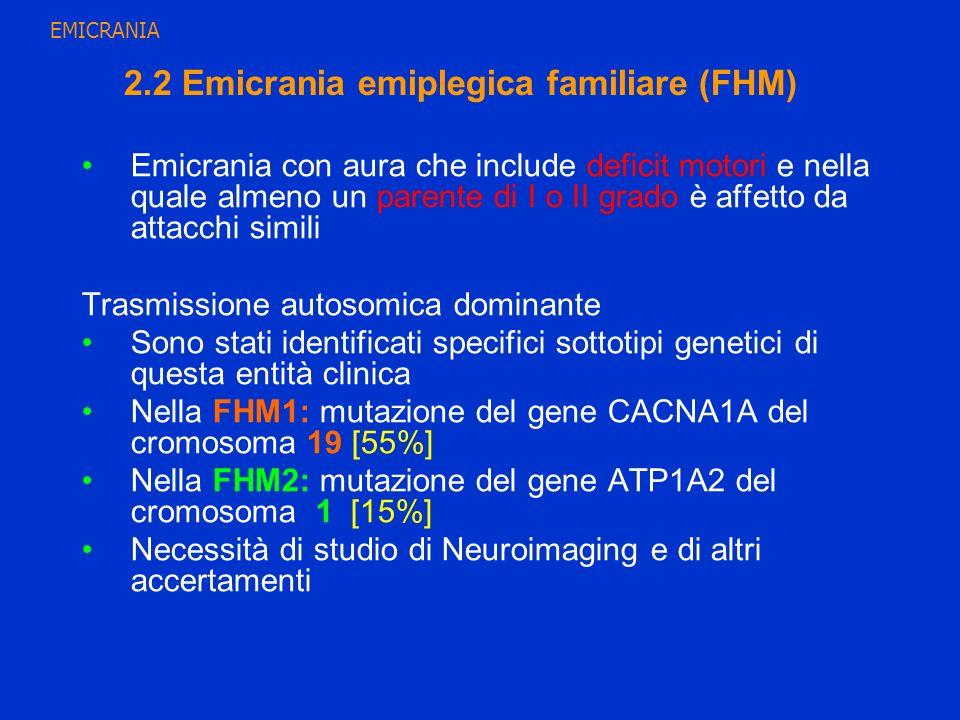 2.2 Emicrania emiplegica familiare (FHM)