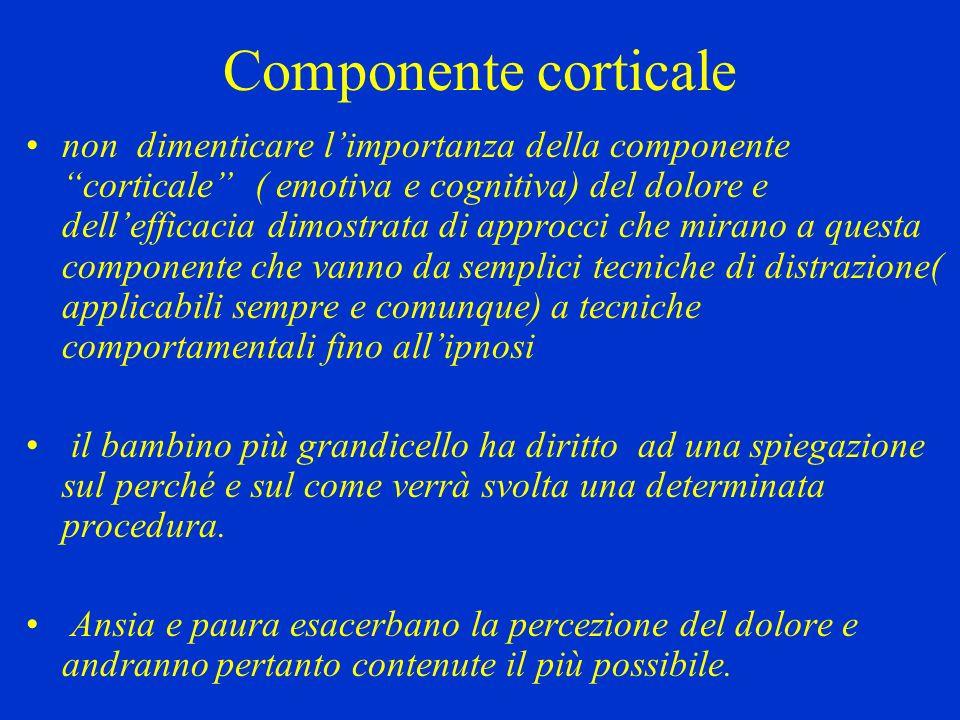 Componente corticale