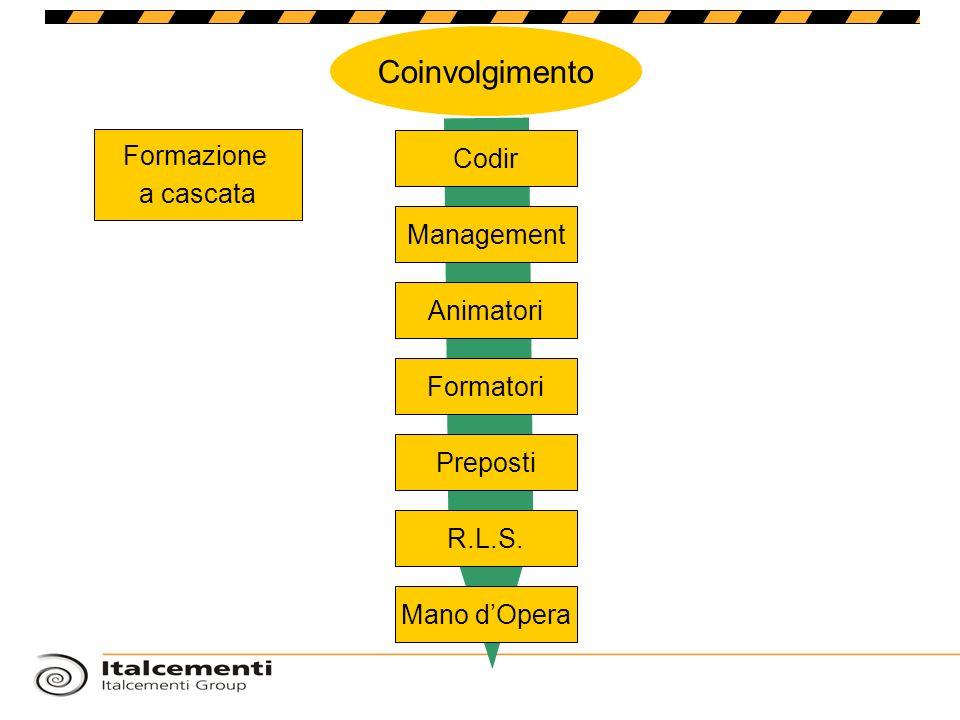 Coinvolgimento Formazione Codir a cascata Management Animatori