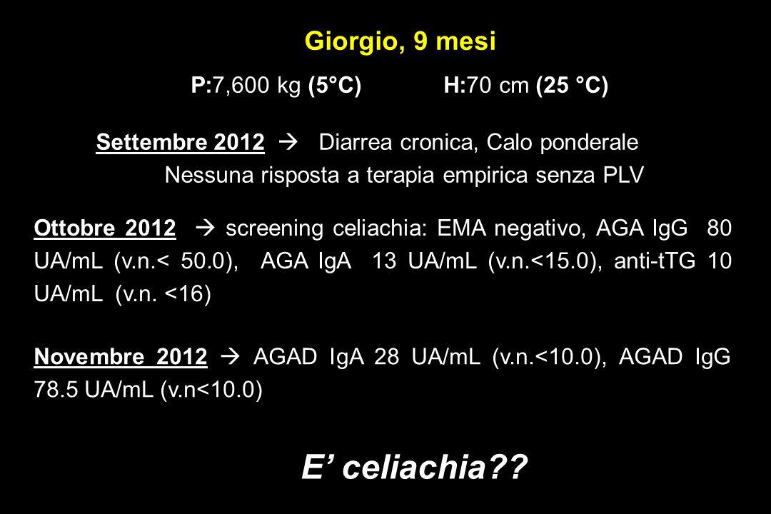 Giorgio, 9 mesi P:7,600 kg (5°C) H:70 cm (25 °C)