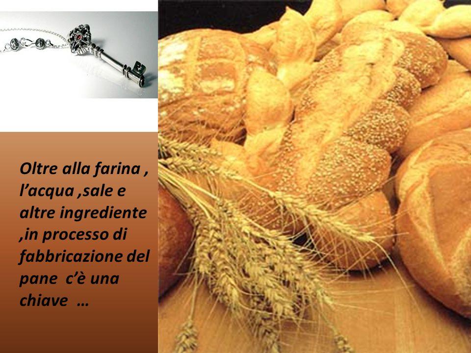 Oltre alla farina , l'acqua ,sale e altre ingrediente ,in processo di fabbricazione del pane c'è una chiave …