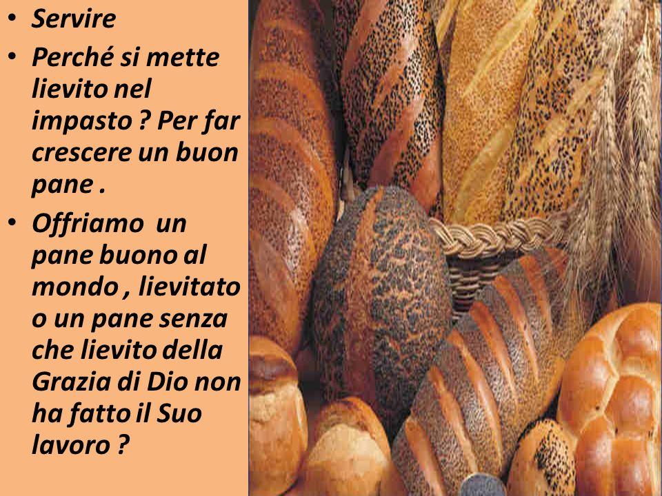 Servire Perché si mette lievito nel impasto Per far crescere un buon pane .