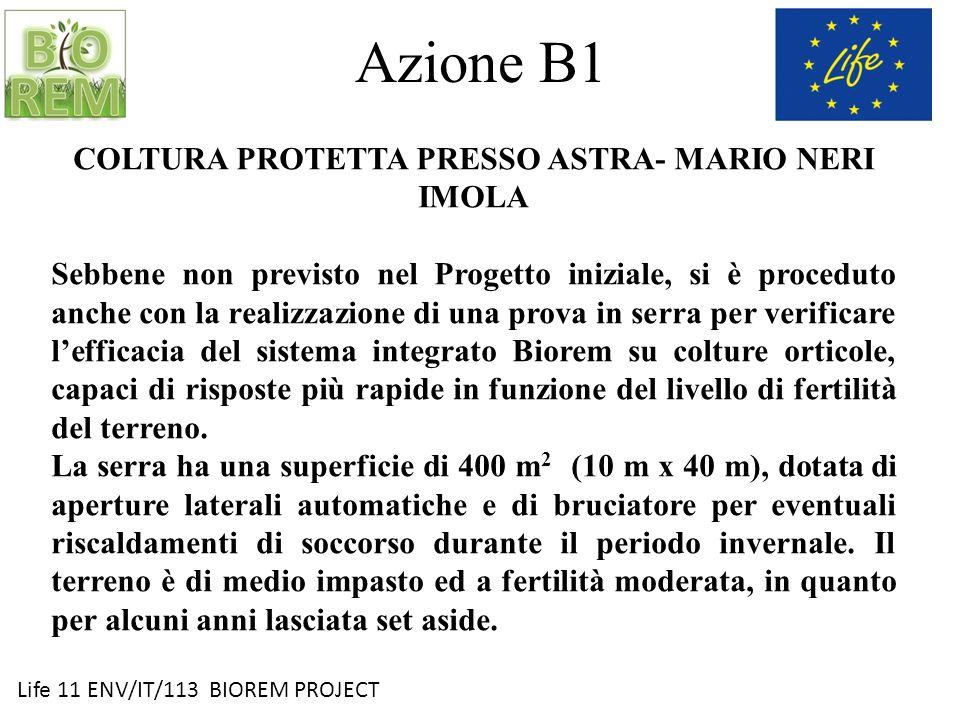 COLTURA PROTETTA PRESSO ASTRA- MARIO NERI IMOLA