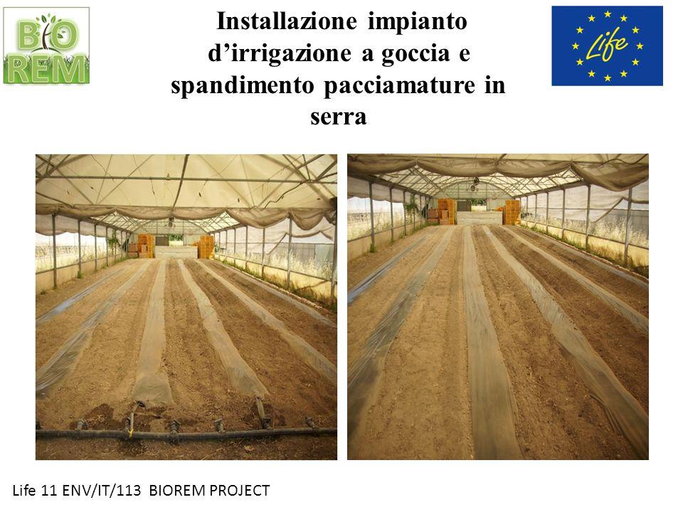 Installazione impianto d'irrigazione a goccia e spandimento pacciamature in serra