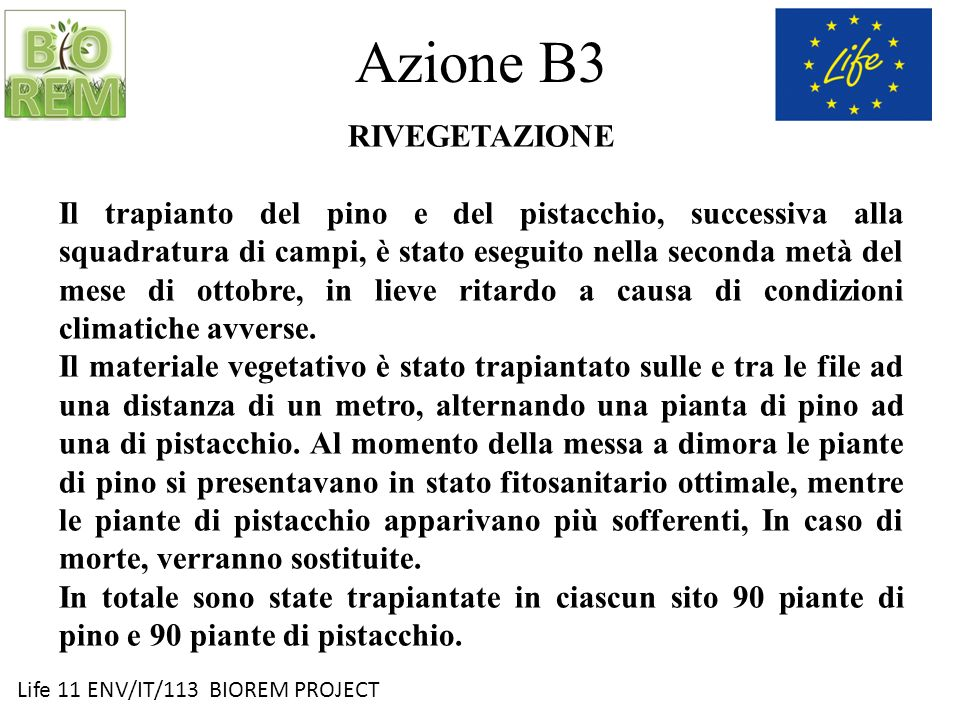 Azione B3 RIVEGETAZIONE