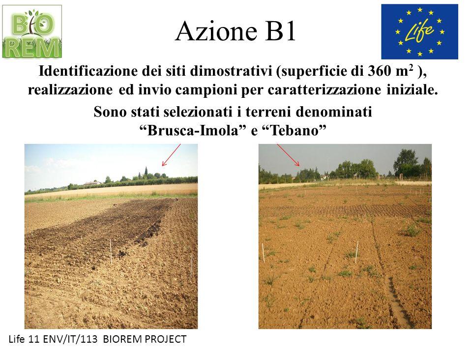 Sono stati selezionati i terreni denominati Brusca-Imola e Tebano