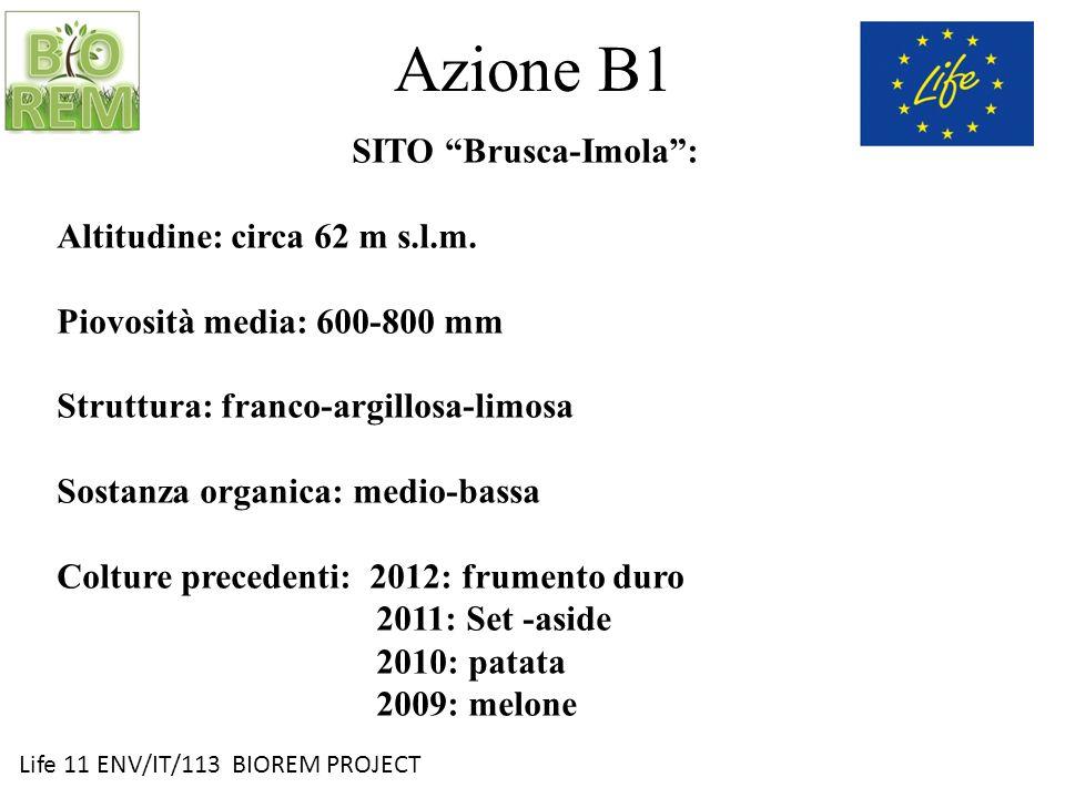 Azione B1 SITO Brusca-Imola : Altitudine: circa 62 m s.l.m.