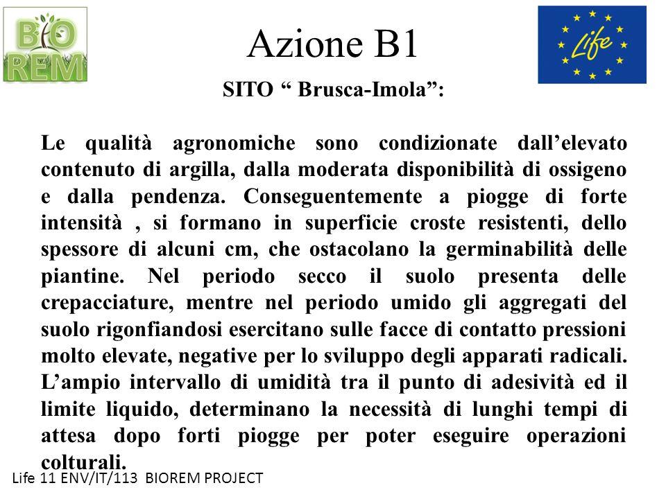 Azione B1 SITO Brusca-Imola :