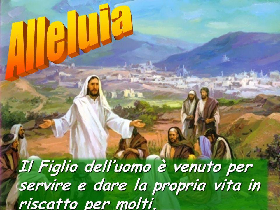 Alleluia Il Figlio dell'uomo è venuto per servire e dare la propria vita in riscatto per molti.