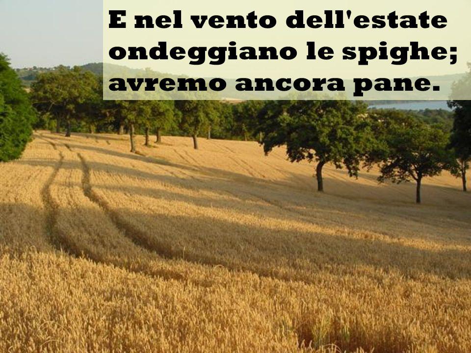 E nel vento dell estate ondeggiano le spighe; avremo ancora pane.
