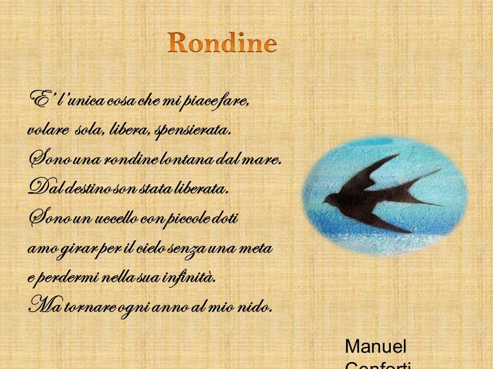 Rondine E' l'unica cosa che mi piace fare,