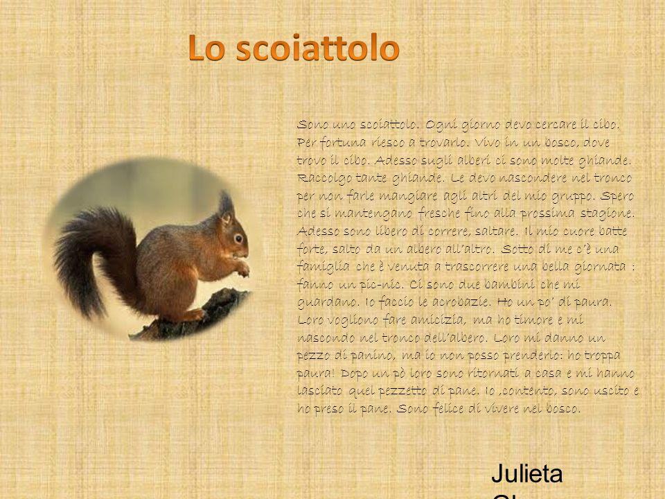 Lo scoiattolo Julieta Ghazaryan