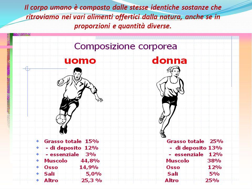 Il corpo umano è composto dalle stesse identiche sostanze che ritroviamo nei vari alimenti offertici dalla natura, anche se in proporzioni e quantità diverse.