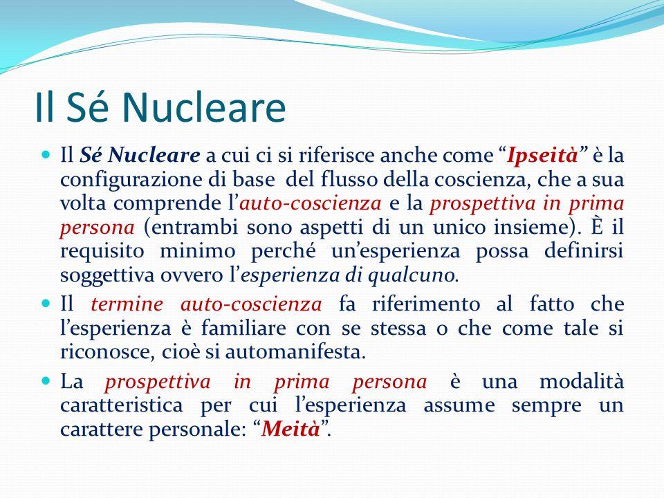 Il Sé Nucleare