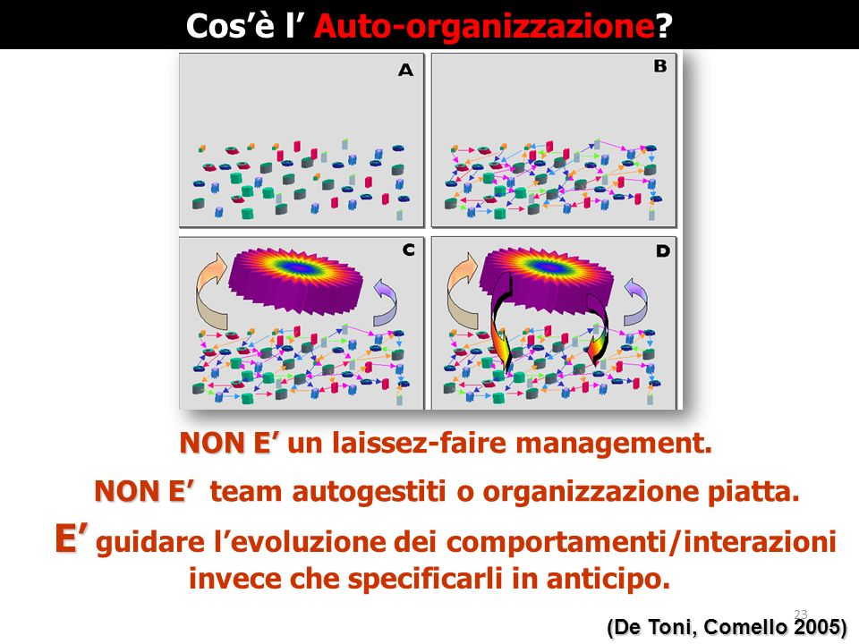 Cos'è l' Auto-organizzazione