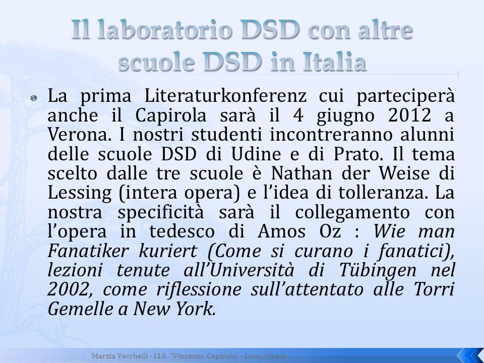 Il laboratorio DSD con altre scuole DSD in Italia