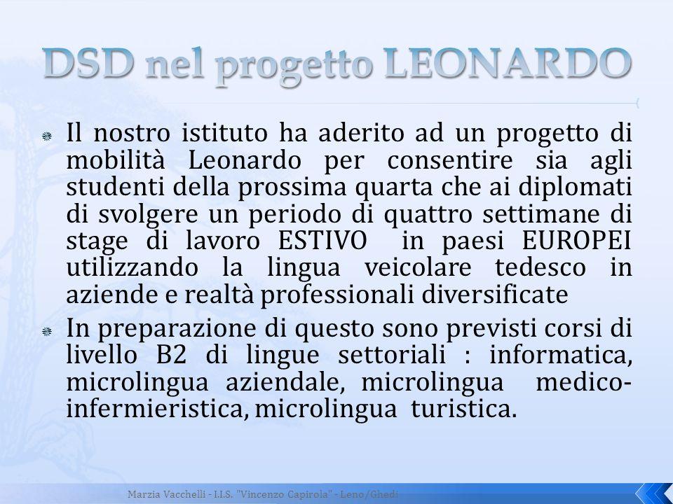 DSD nel progetto LEONARDO