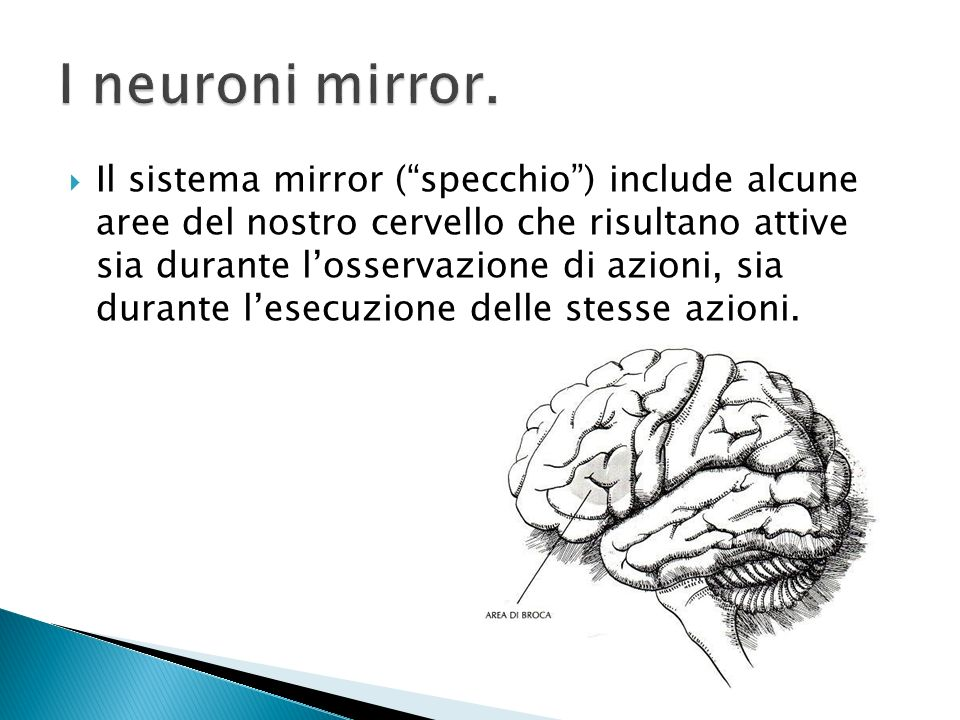 I neuroni mirror.