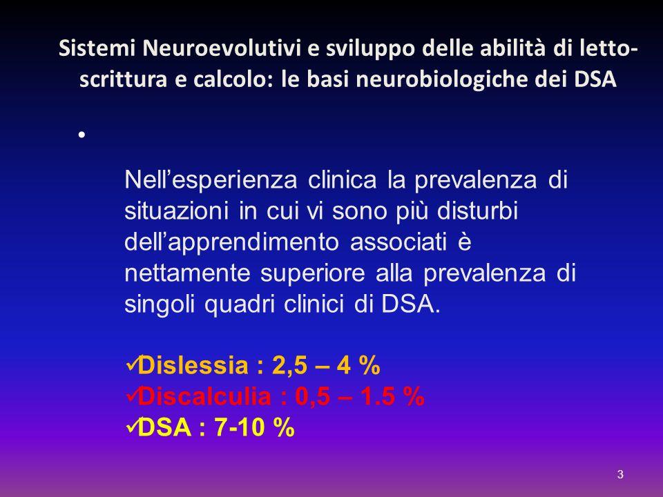 Sistemi Neuroevolutivi e sviluppo delle abilità di letto-scrittura e calcolo: le basi neurobiologiche dei DSA