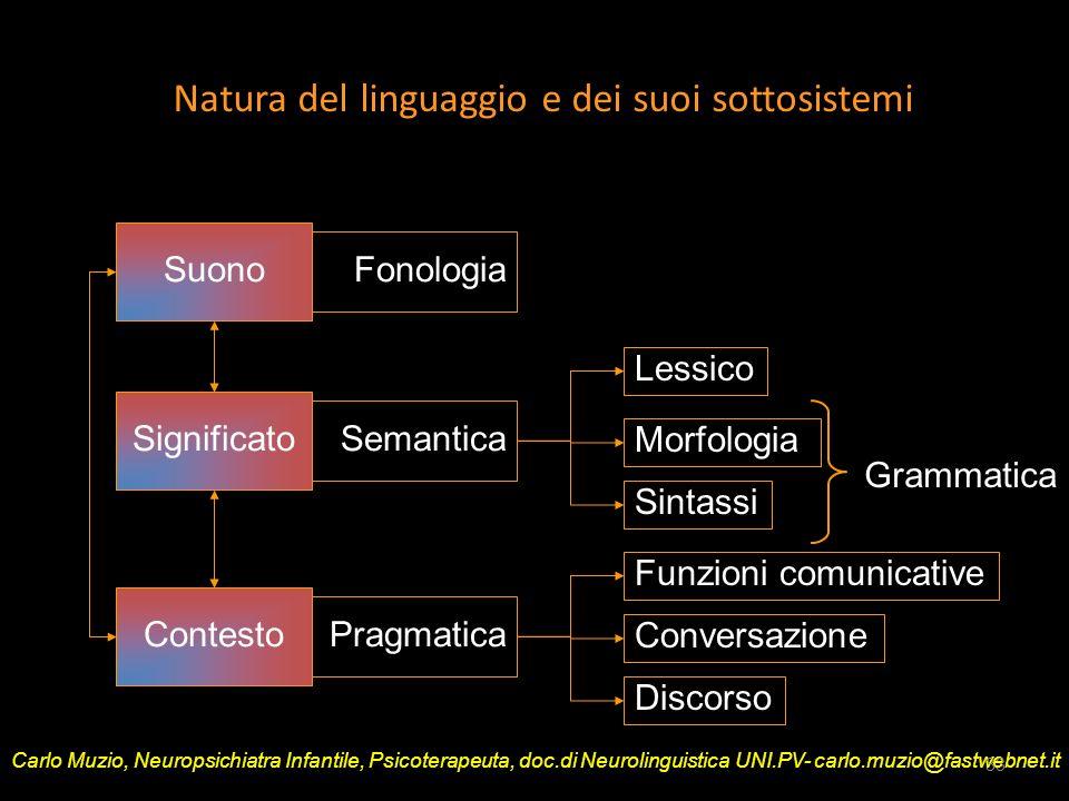 Natura del linguaggio e dei suoi sottosistemi