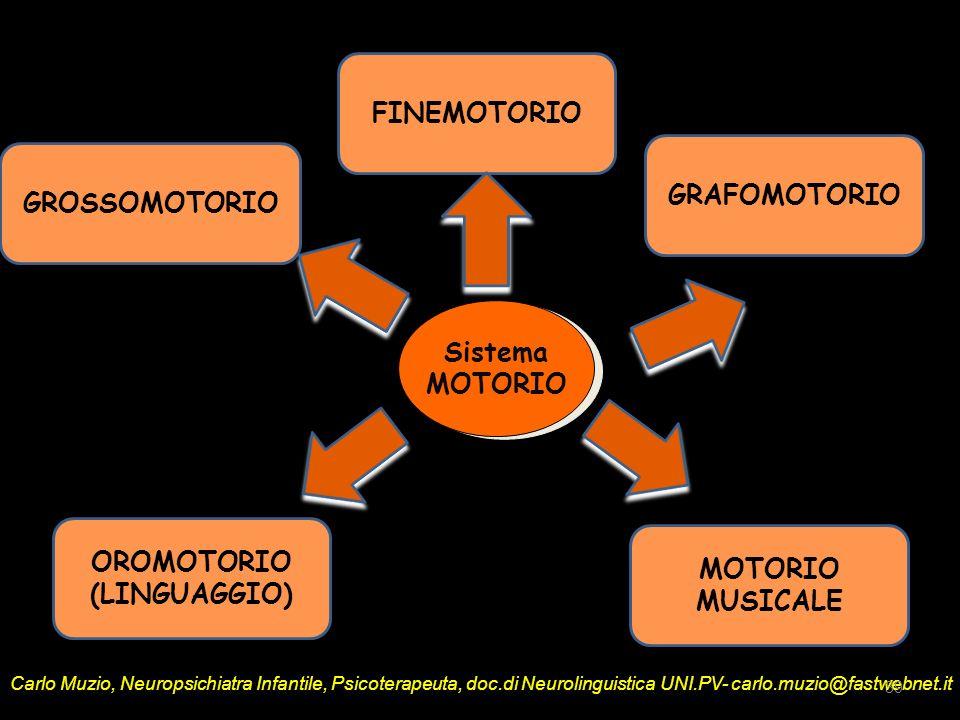 FINEMOTORIO GRAFOMOTORIO GROSSOMOTORIO Sistema MOTORIO OROMOTORIO