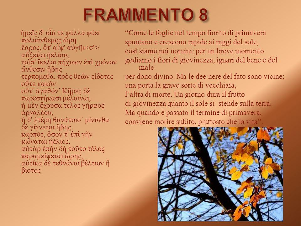FRAMMENTO 8