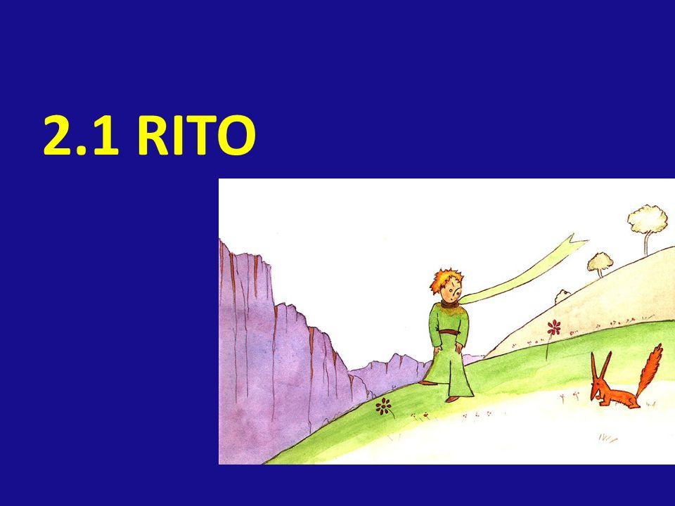 2.1 RITO
