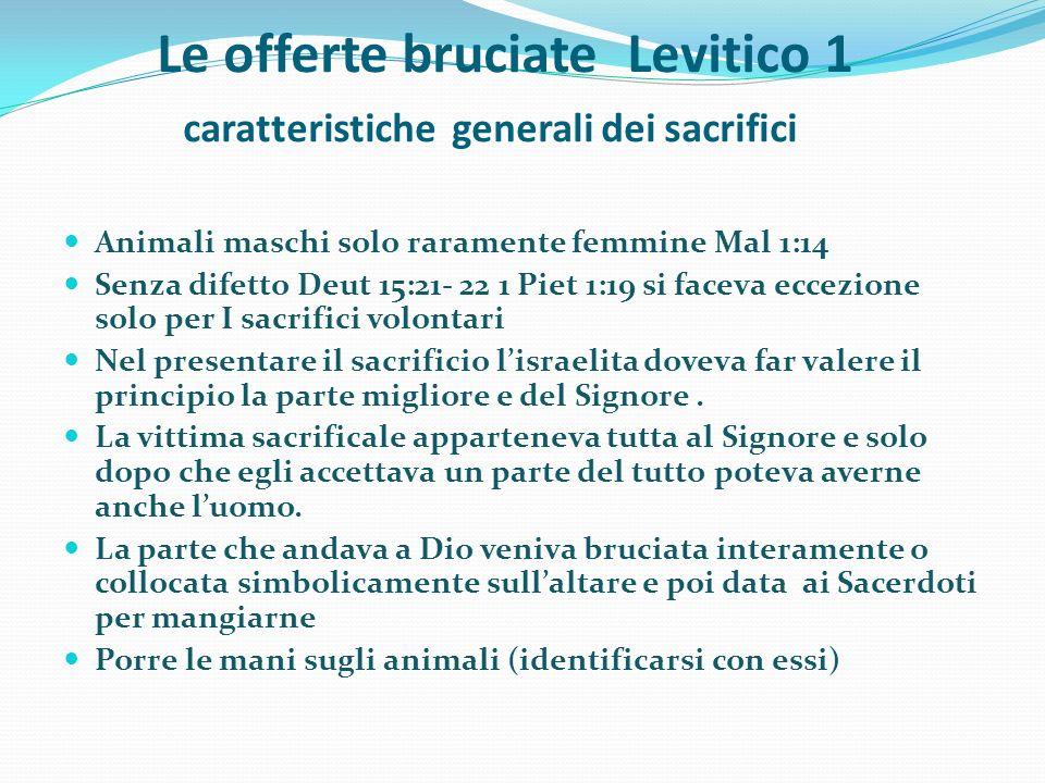 Le offerte bruciate Levitico 1 caratteristiche generali dei sacrifici