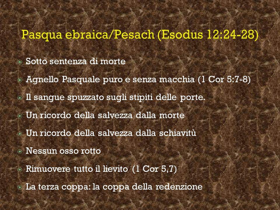 Pasqua ebraica/Pesach (Esodus 12:24-28)