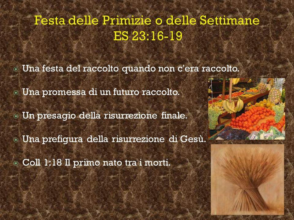 Festa delle Primizie o delle Settimane ES 23:16-19