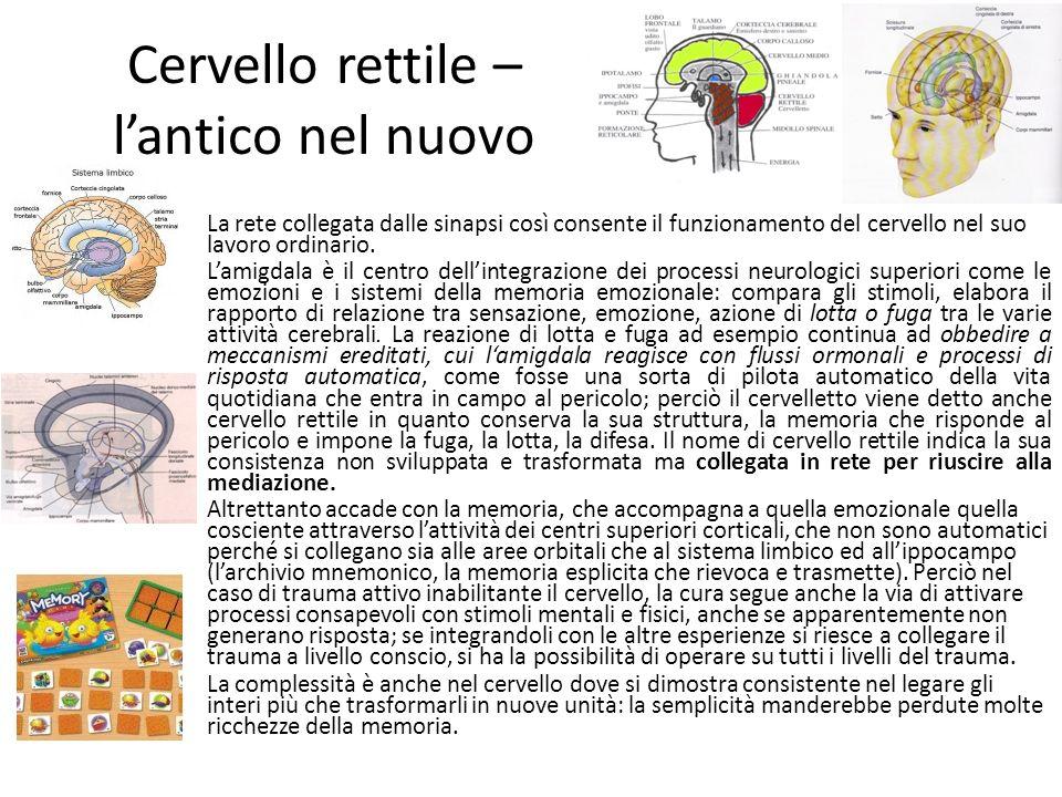 Cervello rettile – l'antico nel nuovo