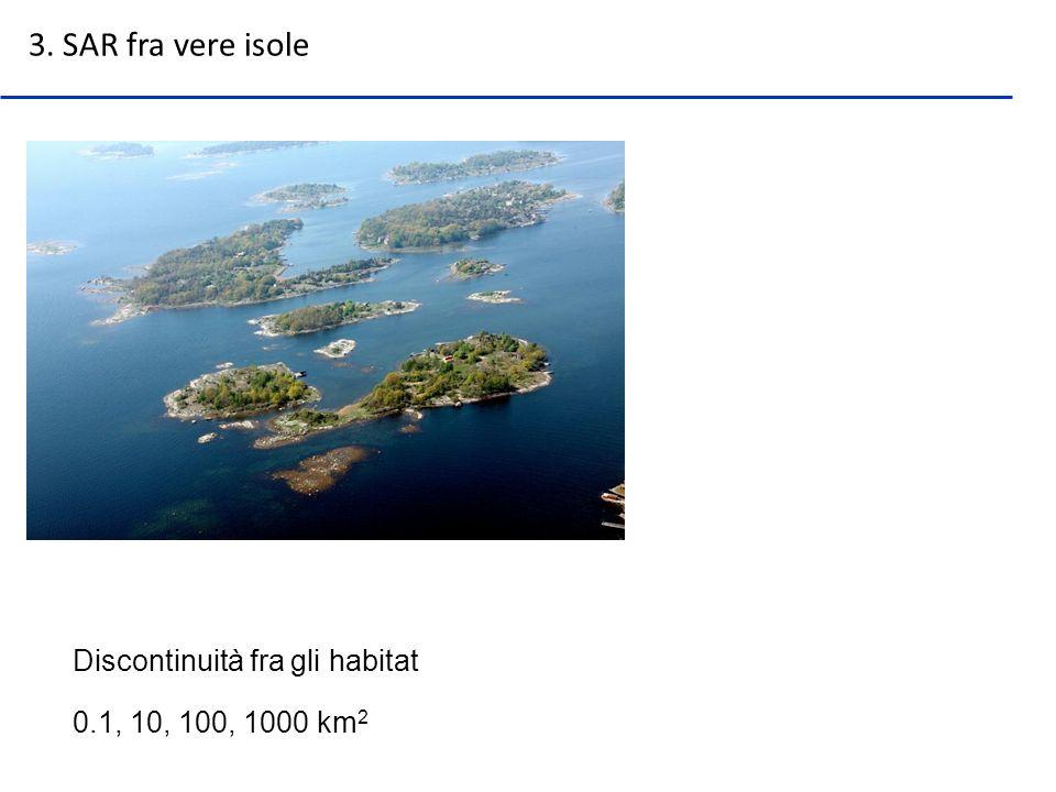 3. SAR fra vere isole Discontinuità fra gli habitat
