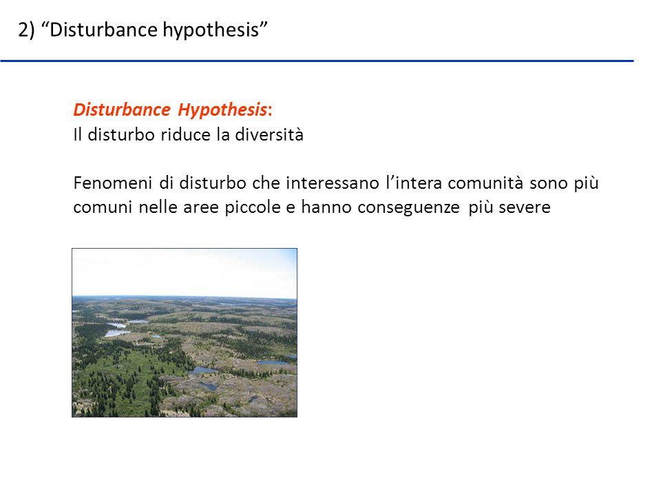 2) Disturbance hypothesis