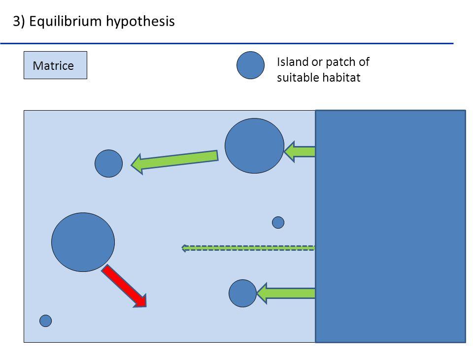 3) Equilibrium hypothesis