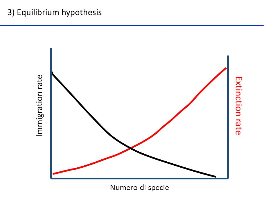 Extinction rate 3) Equilibrium hypothesis Immigration rate