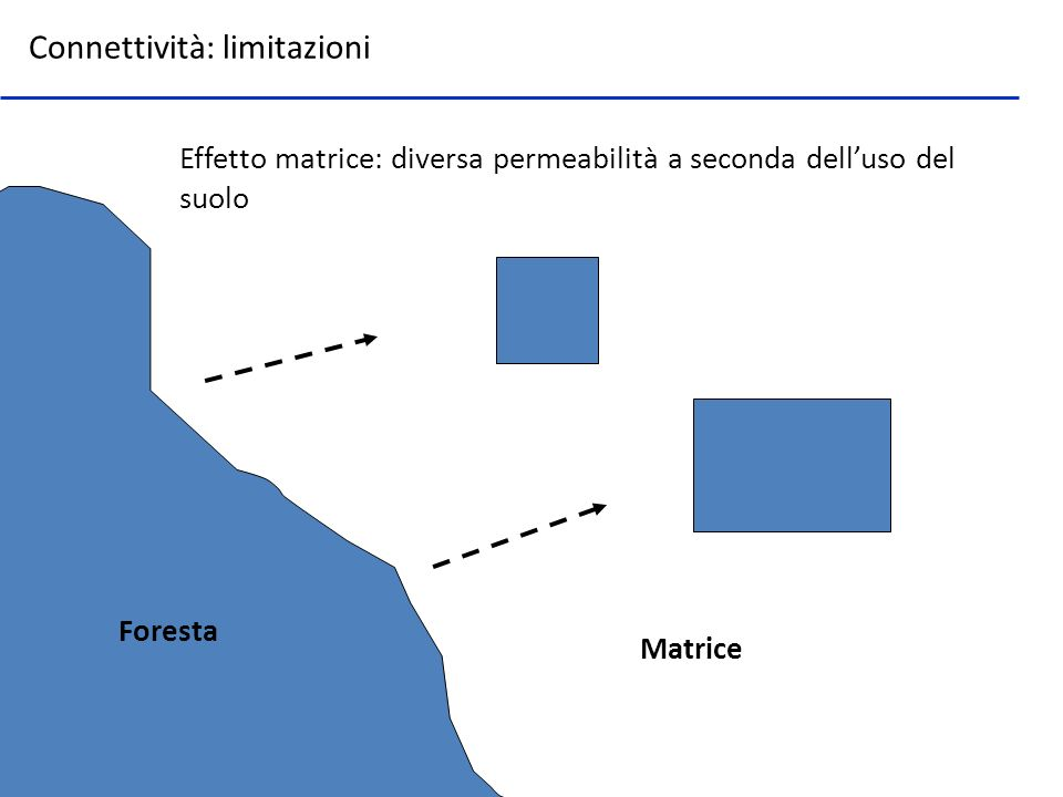 Effetto matrice: diversa permeabilità a seconda dell'uso del suolo