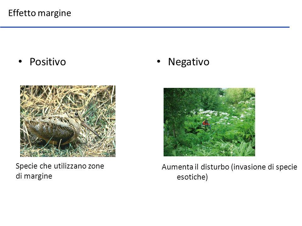Positivo Negativo Effetto margine Specie che utilizzano zone